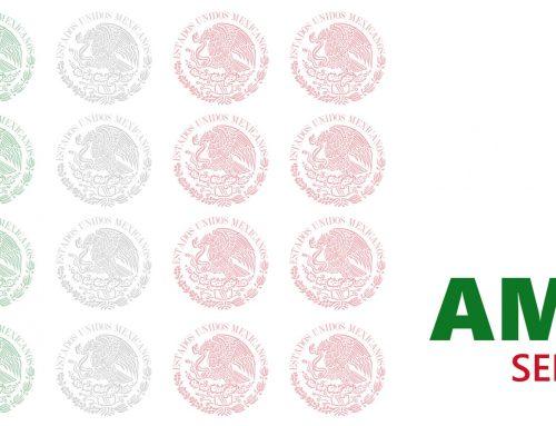 Editorial Blog AMPPI No. 37 Septiembre 2020